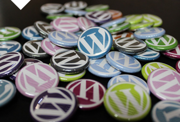 f2 digital services - wordpress entwicklung